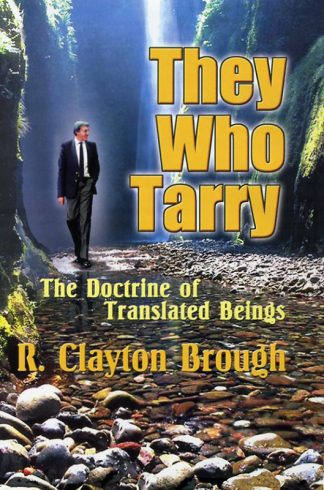 They Who Tarry book cover
