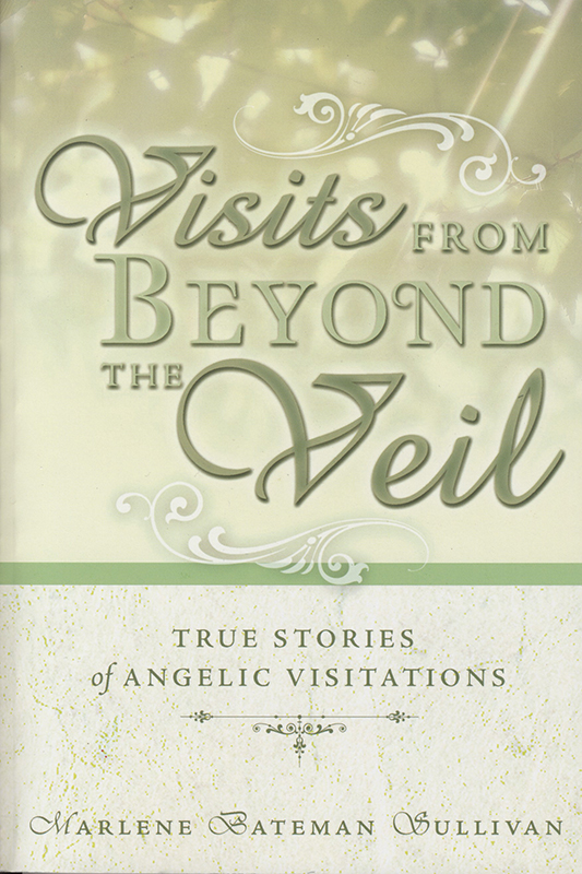 Visits From Beyond the Veil book cover