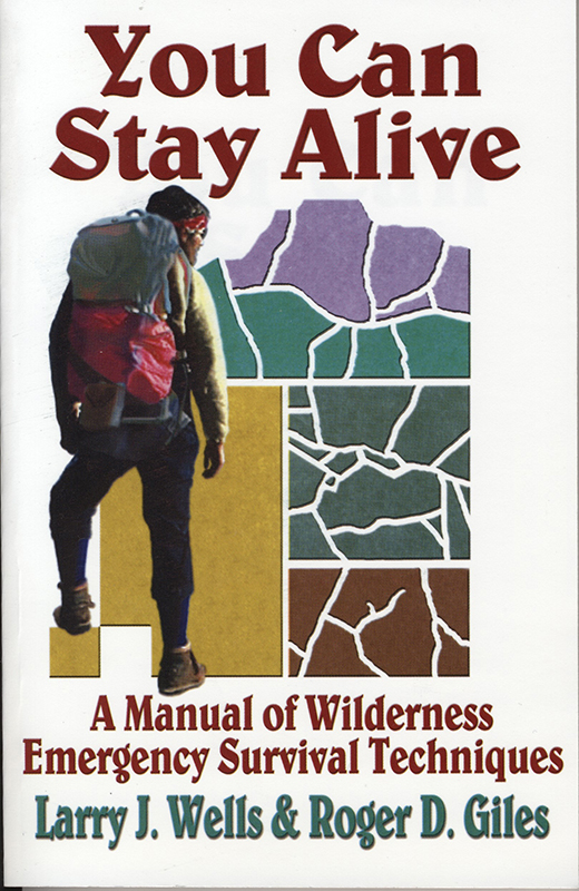 You Can Stay Alive book cover