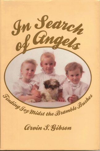 In Search of Angels book cover