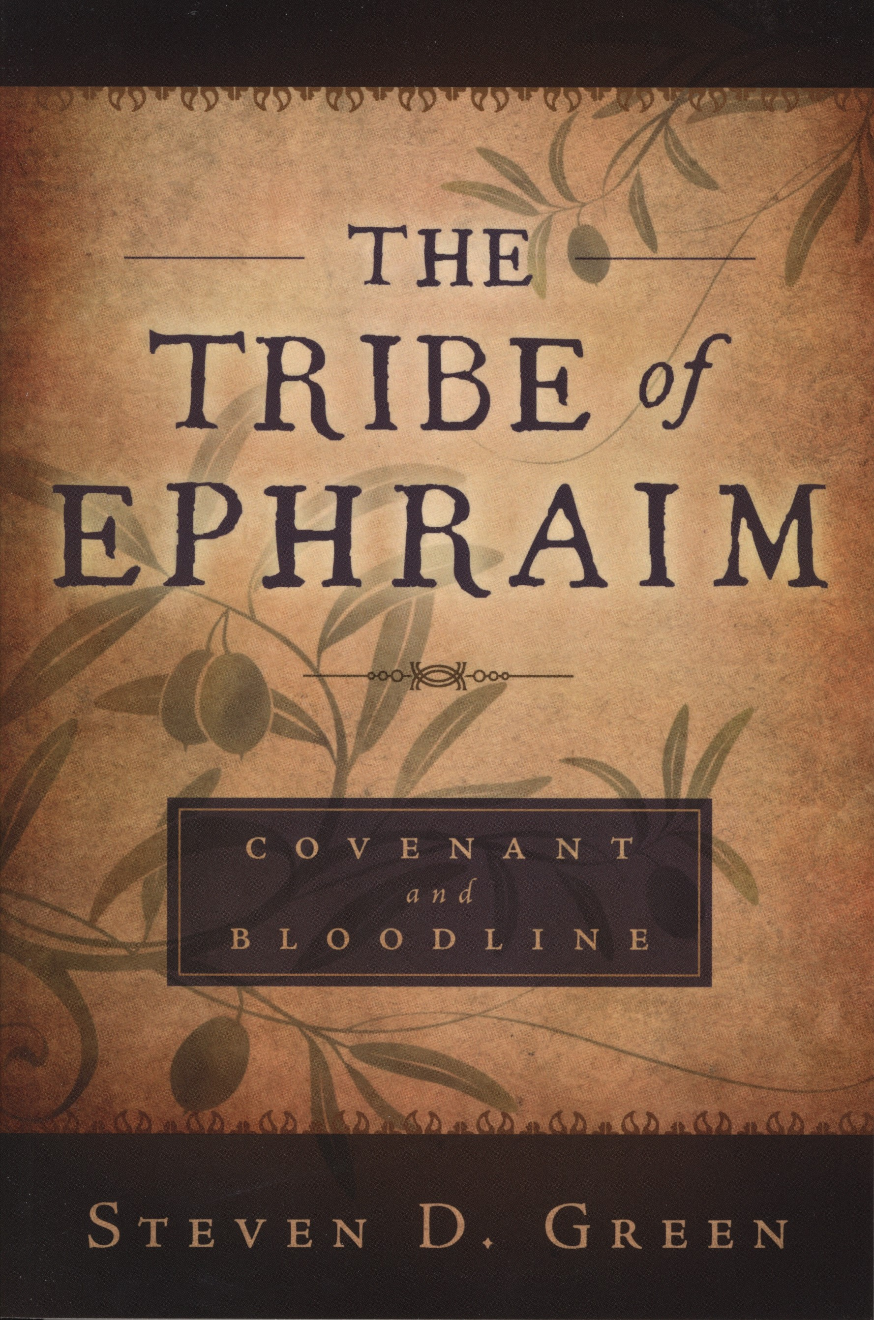 The Tribe of Ephraim book cover